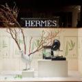 Vitrine du Magasin Hermès Avenue Georges V Paris 8e par Joséphine Pinton