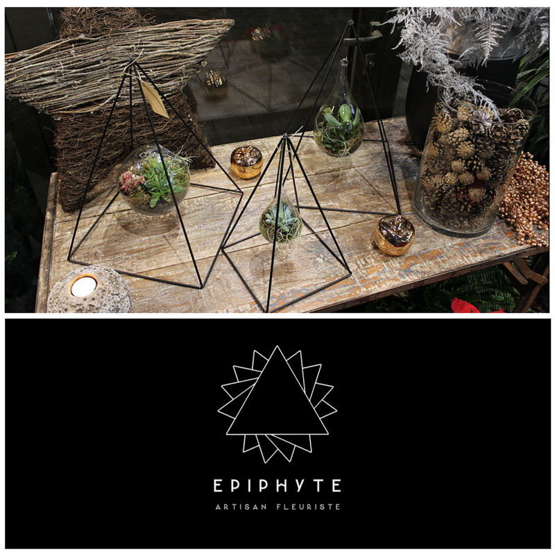 Epiphyte Paris - Message In A Window