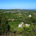 ACO coteaux du Languedoc La Clape