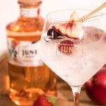 liqueur de gin June Renaissance Spirits